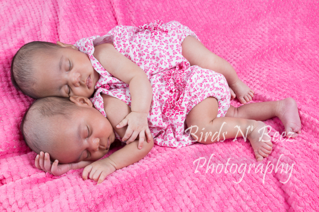 twins newborn maternity photos