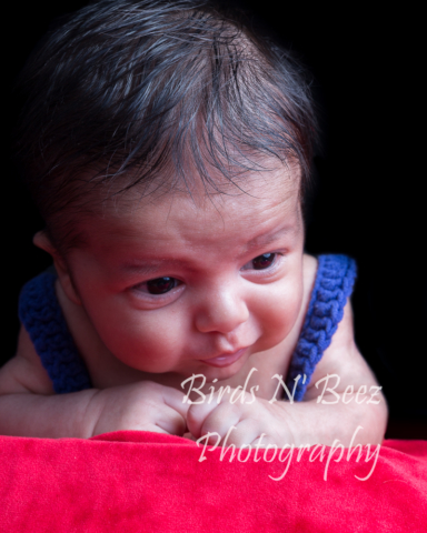 Materity, Newborn, Wedding, Family,