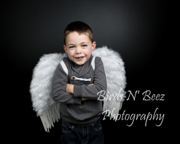 Family Photography, Angel wings, Toddler,