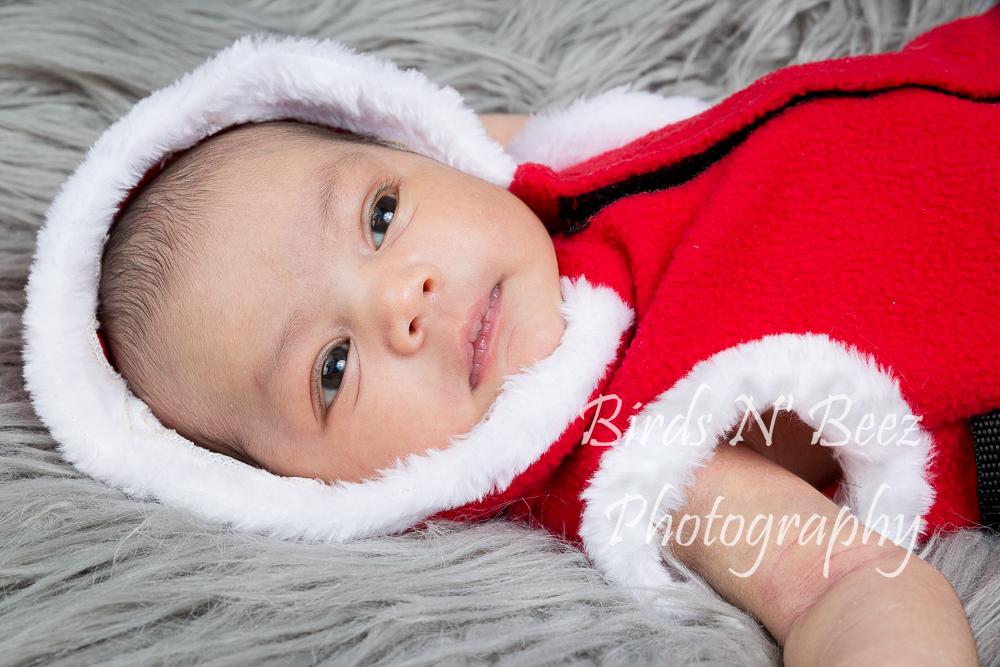 Newborn, Baby, Photography, Maternity, Family, Top Rated, Children
