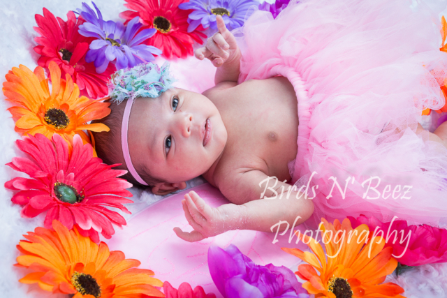 Newborn, Baby, Maternity, Photography, Family, Top Rated, Children