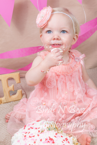 Newborn, Maternity, Toddler, Children, Photography, Cake Smash