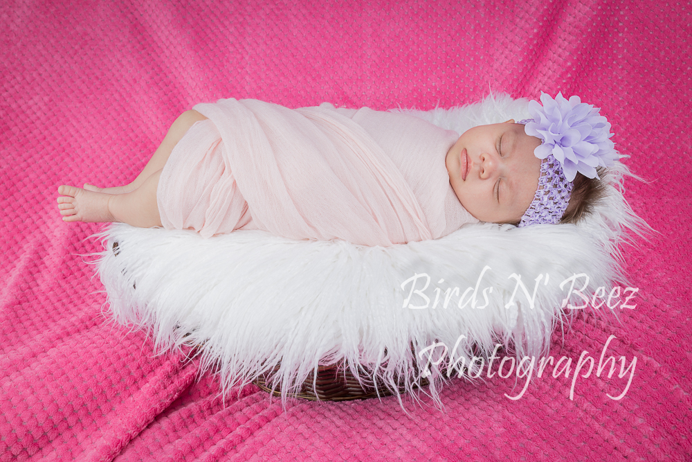 Newborn, Maternity, Toddler, Children, Photography