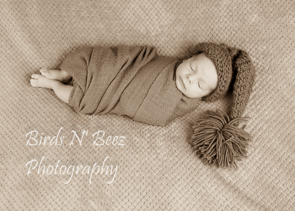 Newborn, Maternity, Top Rated, Family, Toddler, photography