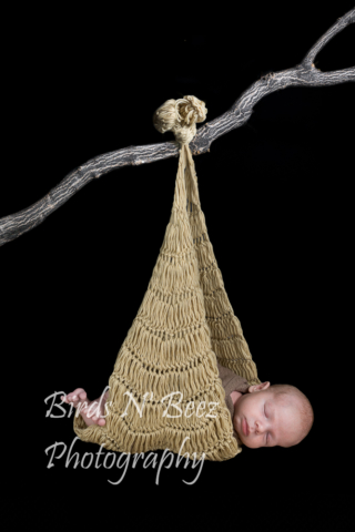newborn, hanging baby, maternity, top rated, family