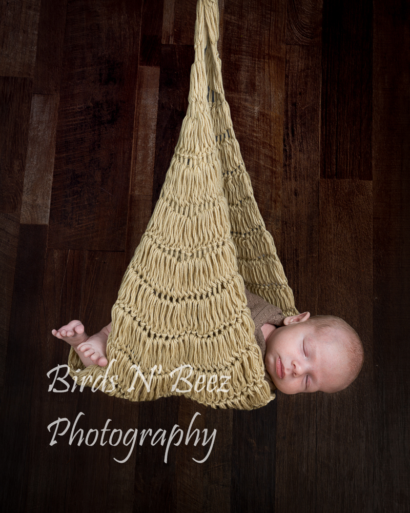 newborn, family, maternity, top rated photograher