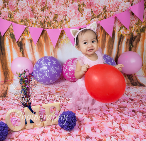 Maternity, Newborn, Cake Smash, Family, Toddler, Baby, Top Rated Calgary