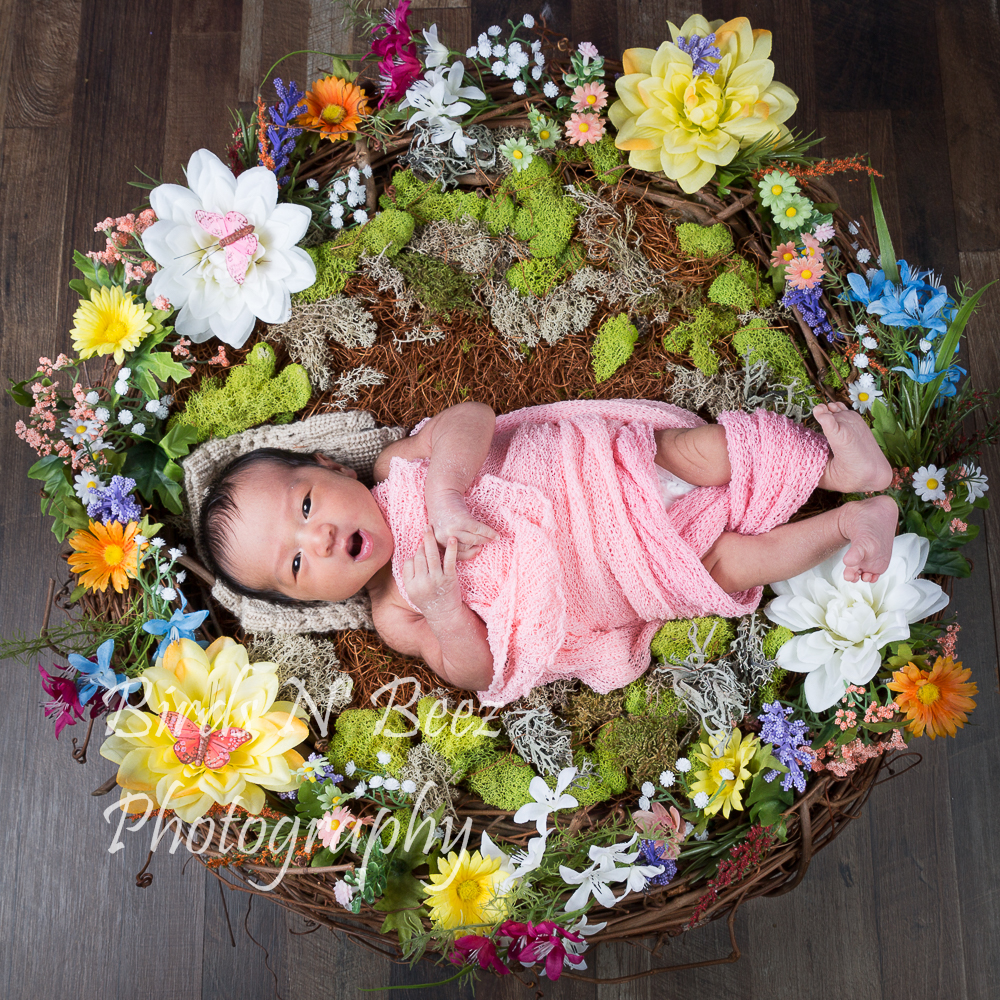 Photographer, Maternity Photography, Baby Photographer, Calgary, Top Rated